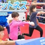 box-fitness-gym
